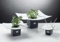 garden lemir